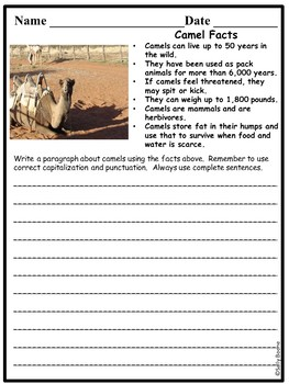 Expository Writing Prompts Animals