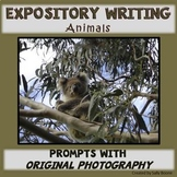 Writing Prompts Animals ExpositoryWriting