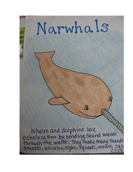 Expository Writing for Whales and Dolphins that Use Echolocation--Sound
