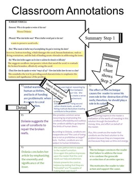 Explanatory Writing Prompt, Analytic Summary Sample Essay, Dangers of Zoos