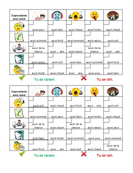 Expressions avec avoir French Verb Grid Vocabulary Activity