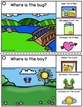 Expressive Language Picture Scenes for Summer