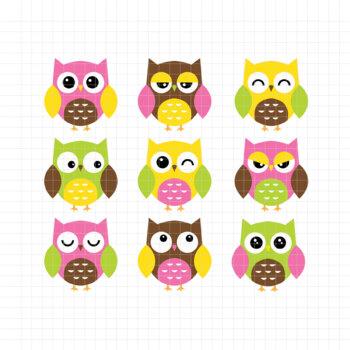 Expressive Owl-Digital Clipart (LES.CL02B)