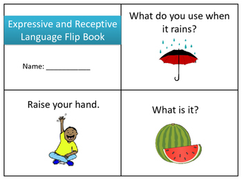 Expressive and Receptive Language Flip Book