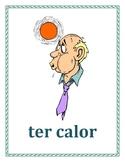 Expressões com ter Portuguese verb Posters