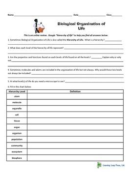 Web Review/Homework - Organization of Life