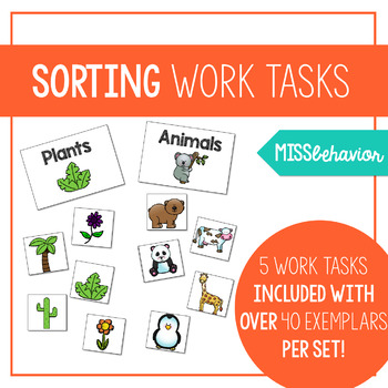 Extended Sorting Work Tasks for Special Education