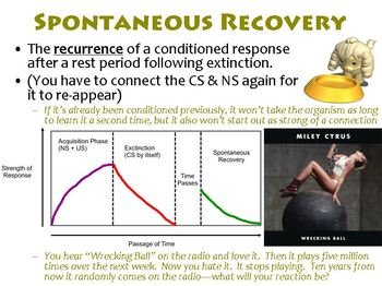 Extensions of Classical Conditioning PowerPoint