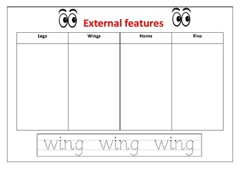 External features worksheet