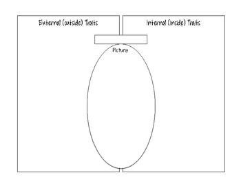 External vs. Internal Traits Graphic Organizer