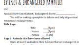 Extinct/ Endagered Animal Pamphlet Rubric