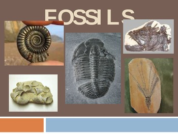 Extinct, Threatened, Endangered, Thriving & Fossils Powerpoint with Activities