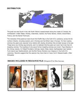 Extinction: The Great Auk Collection