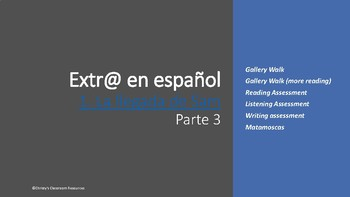 Extr@ Episode 1, Parte 3: Gallery walk, Assessments and Matamoscas