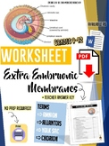Extraembryonic Membranes -Worksheet - High School