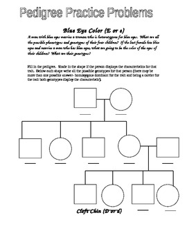 Eye Color Pedigree Worksheet by Jason Demers | Teachers Pay Teachers