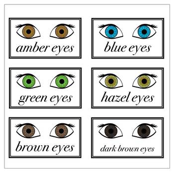 Eye Colors in English Printables (PNG and PDF)
