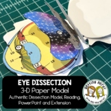 Eye Paper Dissection - Scienstructable 3D Dissection Model - Distance Learning