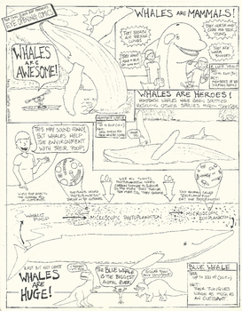 Eye Opening Comics- Whales are Awesome