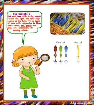 Eye : Science is everywhere, Printables and Task Cards