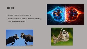Eye of the Storm vocab PowerPoint