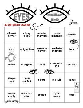 Eyes Vocabulary Bingo