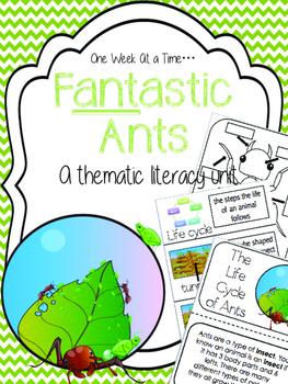F-ant-astic Ants