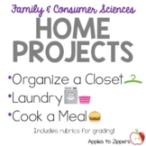 FACS at Home Projects