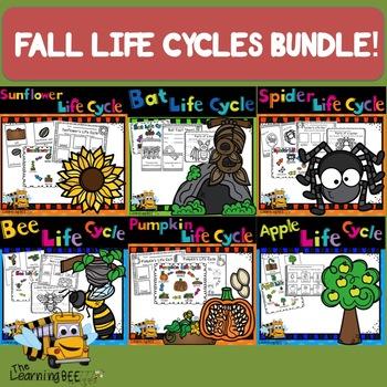 FALL LIFE CYCLES BUNDLE!