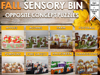 FALL Sensory Bin Opposite Concept/Antonym Puzzle Cards