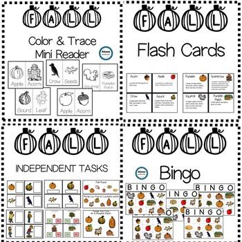 FALL Vocabulary Unit (sped/autism/elementary) #happylaborday