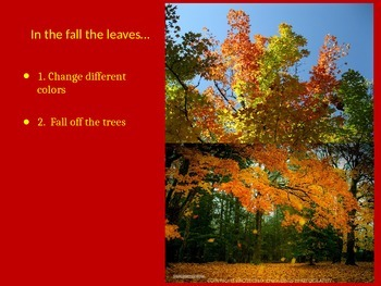FALL leaves- Adjectives