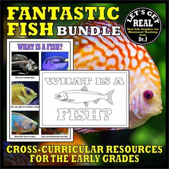 FANTASTIC FISH BUNDLE