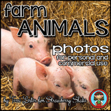 Photos Photographs FARM ANIMALS for Personal and Commercial Use