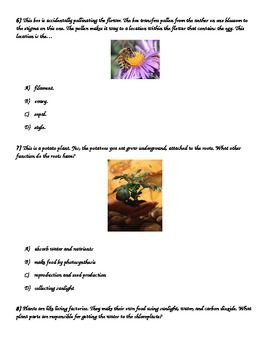 FCAT 2.0 3rd -5th Grade Science Quiz- Life Science