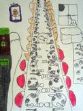 Visual Arts  |  FEAST themed unit  | grade 3  |  SLO and a