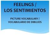 FEELINGS - SENTIMIENTOS
