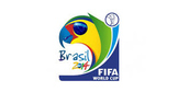 FIFA World Cup 2014 Activity for Spanish Class