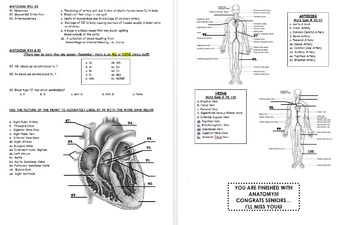 FINAL EXAM: Human Anatomy & Physiology (Spring-2nd-Semester)-Cumulative