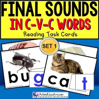 """FINAL LETTER SOUNDS in C-V-C Words TASK CARDS """"Task Box Filler"""" for Autism"""