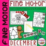 Fine Motor Practice for December