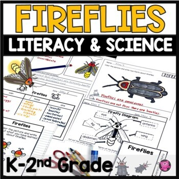 Fireflies Activities Flip Books Life Cycles and Research for Beginners