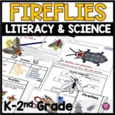 Fireflies Activities Flip Books Life Cycles and Research f