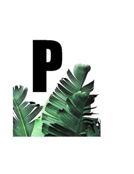 FIRST GRADE PLANTS UNIT