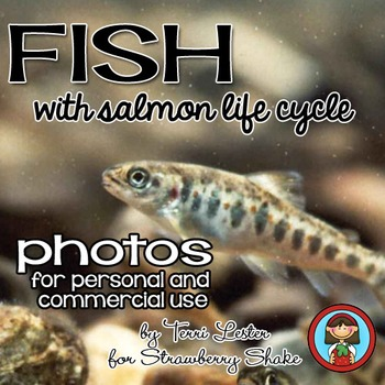 Photos Photographs FISH and SALMON LIFE CYCLE Personal and Commercial Use