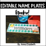 FLASH FREEBIE Edit-able Name Plates