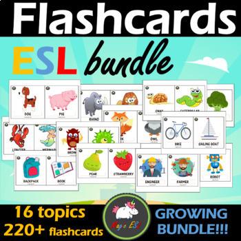 FLASHCARDS  - 18 topics  *GROWING BUNDLE*