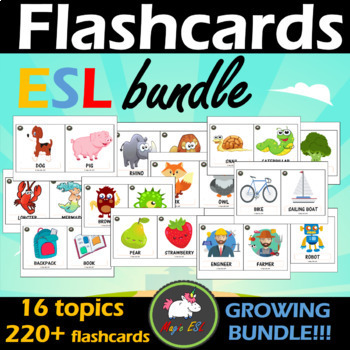 FLASHCARDS  - 19 topics  *GROWING BUNDLE*
