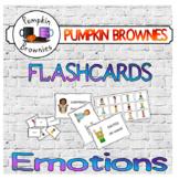 FLASHCARDS: Emotions