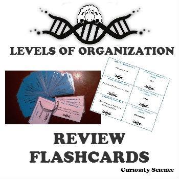 FLASHCARDS - LEVELS OF ORGANIZATION